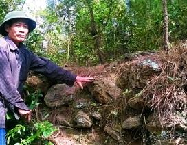 Hà Tĩnh: Phát hiện thành cổ thời Lê