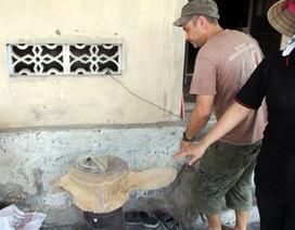 Khối xương lạ khổng lồ ở Hà Tĩnh là xương cá voi