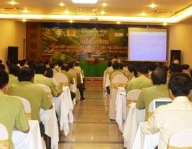 Cả nước phát hiện hơn 21.000 vụ vi phạm pháp luật về bảo vệ và phát triển rừng