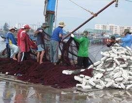 """""""Bỏ qua"""" lệnh cấm của Trung Quốc, ngư dân hối hả ra khơi"""