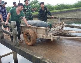 Phát hiện quả bom nặng 340 kg dưới hồ nuôi cá