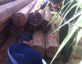 Dân tố cáo nguyên Phó bí thư huyện ủy chứa gỗ lậu