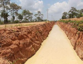 Đào hào ngăn voi rừng, một doanh nghiệp bị xử phạt