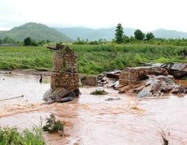 Cầu tạm bị nước cuốn trôi: Hỗ trợ 100 triệu đồng xây cầu mới