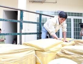 Mua hơn 700kg thịt heo thối từ Bình Định về Đắk Lắk tiêu thụ