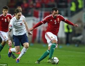 Vượt qua Na Uy, Hungary giành vé dự Euro 2016