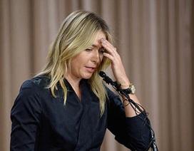 Maria Sharapova công khai thừa nhận sử dụng doping