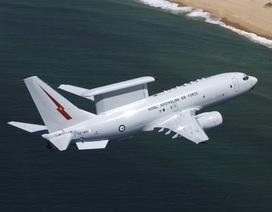 """Hàn Quốc tiếp nhận máy bay do thám thế hệ ba """"Peace Eye"""""""