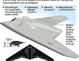 Iran tuyên bố đủ khả năng chế tạo máy bay không người lái của Mỹ