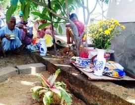 Dân lập bàn thờ cúng bái... cây chuối tí hon