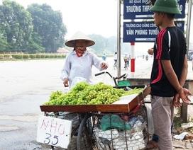 """Nho Trung Quốc """"đột lốt"""" nho Ninh Thuận ồ ạt xuống phố"""