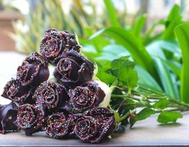 Quà 20/10 độc lạ: 250.000 đồng một bông hồng phủ sô cô la