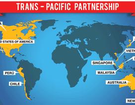 """Hội nhập TPP: Doanh nghiệp """"sống nhờ vào quan hệ"""" đừng mơ!"""