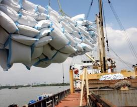 Kinh tế Việt Nam đang tụt hậu so với chính mình!