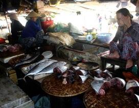 Giới kinh doanh hải sản điêu đứng vì thông tin cá chết hàng loạt ở miền Trung