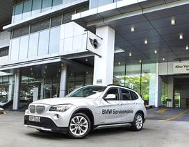 Tổng cục Hải quan quyết định dừng thông quan xe ô tô của Euro Auto