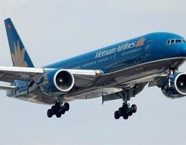 Máy bay Vietnam Airlines hỏng động cơ vì bị chim trời đâm va