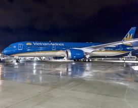Máy bay hiện đại nhất Việt Nam phải dừng hoạt động vì sự cố chim trời