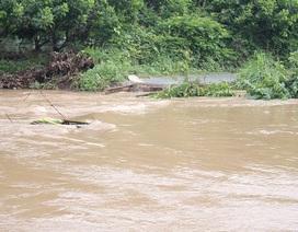 Nước lớn cuốn sập cầu, hơn 500 hộ dân bị cô lập