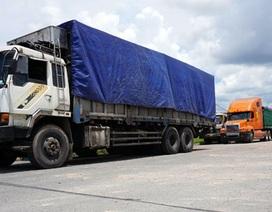 Vụ bắt đoàn xe quá tải: Có xe chở vượt tải trên 300%