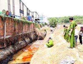 Bắt quả tang một công ty xả nước thải chưa qua xử lý ra môi trường
