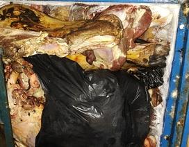 """Phát hiện cơ sở """"hô biến"""" thịt bò thối thành thịt bò tươi bằng hóa chất"""