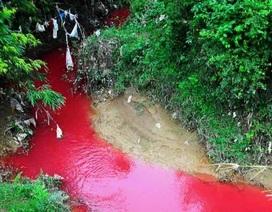 """Hãi hùng dòng suối """"máu"""" bất thường ở Điện Biên"""