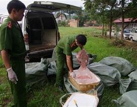 Bị Công an kiểm tra, bỏ lại gần 1 tấn nầm thối trong nhà hoang