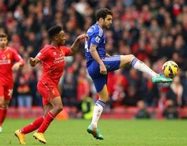 Chelsea méo mặt vì chấn thương của Fabregas