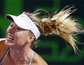 """""""Búp bê"""" Sharapova thua sốc ngay trận ra quân"""
