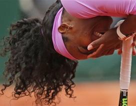 """Serena Williams đi tiếp, hàng loạt các hạt giống """"rụng"""" sớm"""