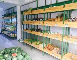Cần Thơ: Các điểm bán nông sản sạch vắng bóng người mua