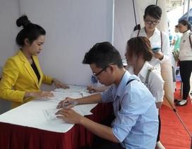 Cần Thơ: Hơn 1.700 hồ sơ gửi tới nhà tuyển dụng