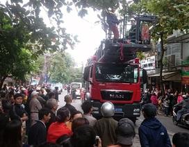 Hà Nội: Khống chế, giải cứu người đàn ông  gào thét trên cây