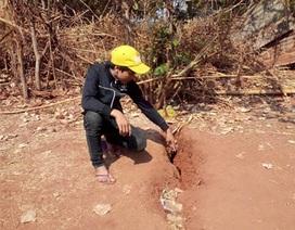 Hoang mang vì mặt đất nứt sâu hơn 2m