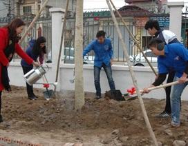 Sở GD&ĐT Hà Nội: Cấm tổ chức du xuân lễ hội trong giờ hành chính