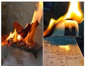 Thanh niên đốt chứng chỉ du học gây tranh cãi