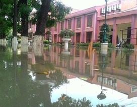 Ngập nặng, trường phải huy động sinh viên tát nước