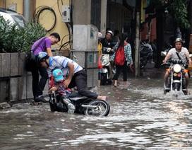 Hà Nội: Trường học cho nghỉ tránh bão, phụ huynh nháo nhào đón con