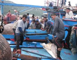 Phản đối hành động vô nhân đạo của tàu Trung Quốc