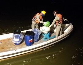 Đã thu gom 76 tấn cá chết bất thường ở Hồ Tây