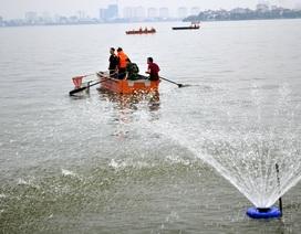 Chủ tịch Hà Nội: Tìm nguyên nhân nước mặt Hồ Tây không có ô xy