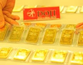 Sáng nay, đấu thầu tiếp 20.000 lượng vàng