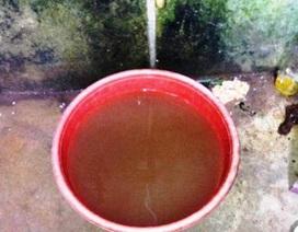 Kiểm tra các công trình nước sạch bị ô nhiễm