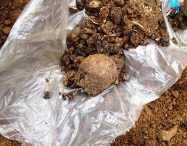 Kiểm tra hiện trường vụ phát hiện hàng chục bộ hài cốt khi đào móng