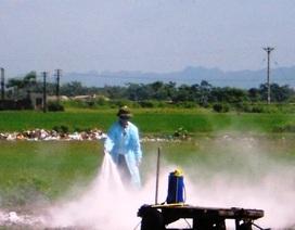 Tiêu hủy hơn 1.000 con gia cầm trong vùng dịch A/H5N6