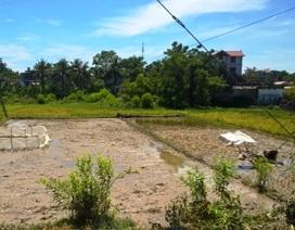 Một người bị điện giật tử vong khi đang cày ruộng