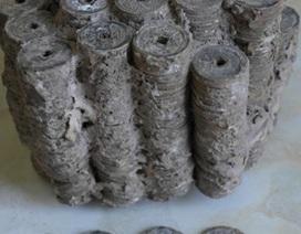 4,5 kg tiền cổ nằm lẫn trong đống cát