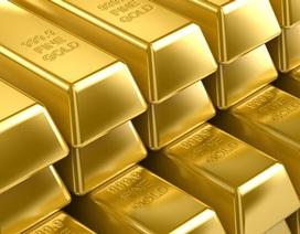 Nhập vàng liệu có đủ để đáp ứng cầu?