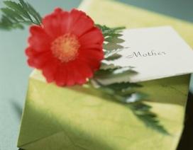 """Quà cho """"Ngày của Mẹ"""""""